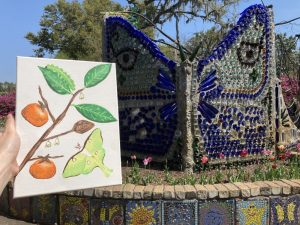 Take Part in Nature Art @ Airlie Gardens